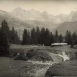 1949_401