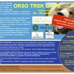 orso-locandina-2